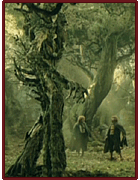Treebeard saves Merry and Pippin from Old Willow